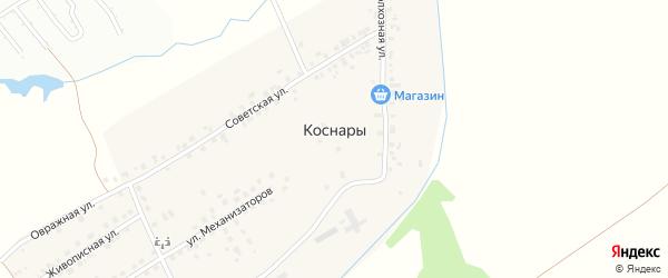 Улица Механизаторов на карте деревни Коснар с номерами домов