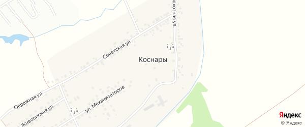 Живописная улица на карте деревни Коснар с номерами домов