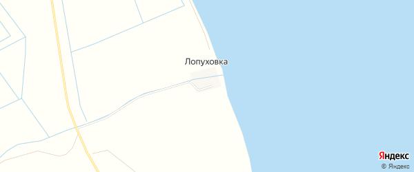 Карта села Лапуховки в Дагестане с улицами и номерами домов