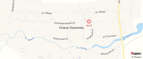 Кооперативная улица на карте деревни Новое Урюмово с номерами домов