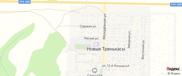Лесная улица на карте деревни Новые Тренькасы с номерами домов