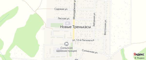Зеленая улица на карте деревни Новые Тренькасы с номерами домов