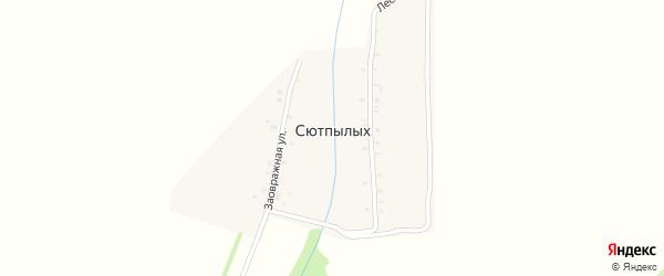 Лесная улица на карте деревни Сютпылых с номерами домов