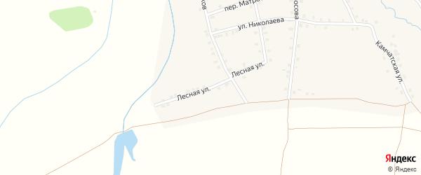 Лесная улица на карте деревни Асхвы с номерами домов