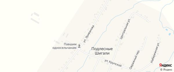 Улица Эриванова на карте деревни Подлесные Шигали с номерами домов