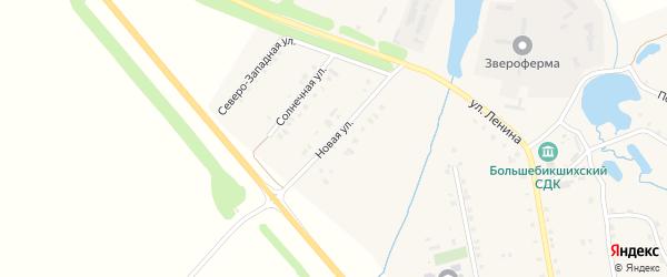 Новая улица на карте деревни Большие Бикшихи с номерами домов