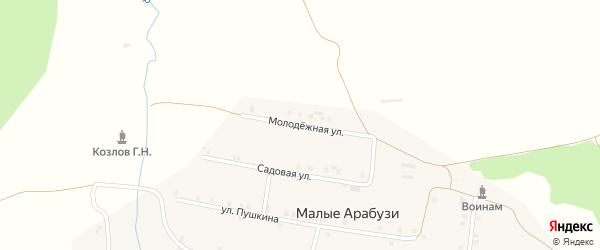 Молодежная улица на карте деревни Малые Арабузи с номерами домов