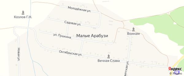 Улица Пушкина на карте деревни Малые Арабузи с номерами домов