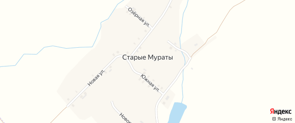 Южная улица на карте деревни Старые Мураты с номерами домов