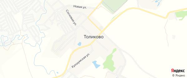 Карта деревни Толиково в Чувашии с улицами и номерами домов