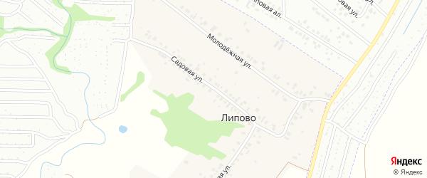 Садовая улица на карте деревни Липово с номерами домов