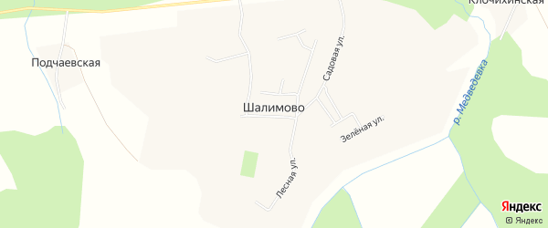 Карта села Шалимово в Архангельской области с улицами и номерами домов