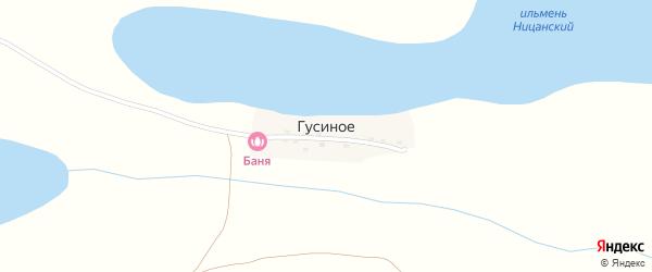 Улица Ленина на карте Гусиного села с номерами домов