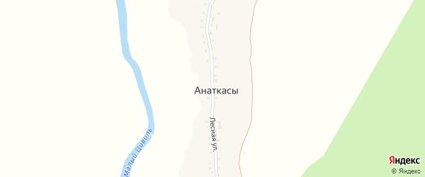 Лесная улица на карте деревни Анаткас с номерами домов