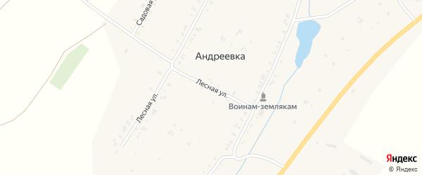 Лесная улица на карте деревни Андреевки с номерами домов