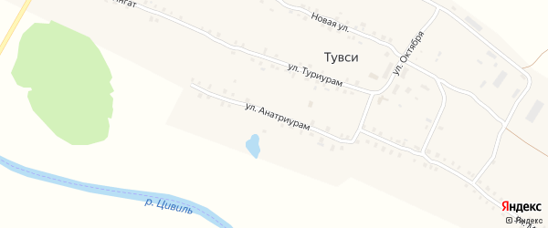 Улица Анатриурам на карте деревни Тувси с номерами домов