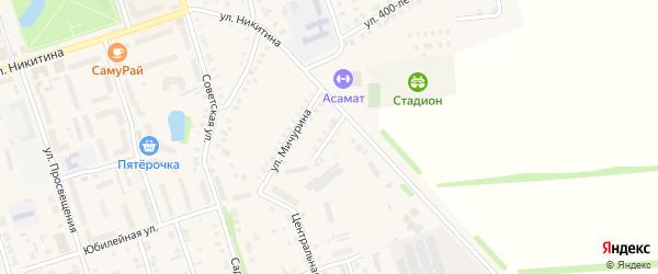 Переулок Мичурина на карте Цивильска с номерами домов