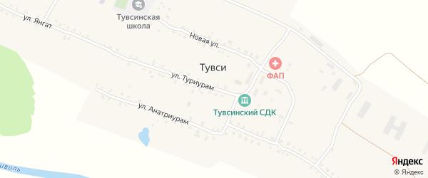 Улица Туриурам на карте деревни Тувси с номерами домов