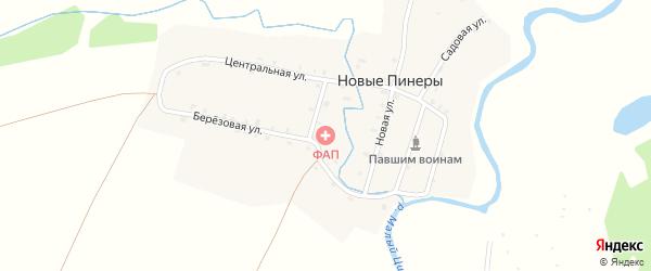 Садовая улица на карте деревни Новые Пинеры с номерами домов