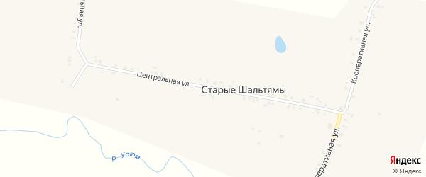 Центральная улица на карте деревни Старые Шальтямы с номерами домов