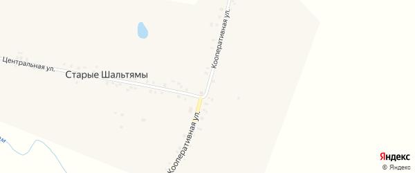 Кооперативная улица на карте деревни Старые Шальтямы с номерами домов