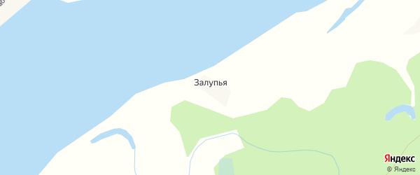 Карта Залупья деревни в Архангельской области с улицами и номерами домов