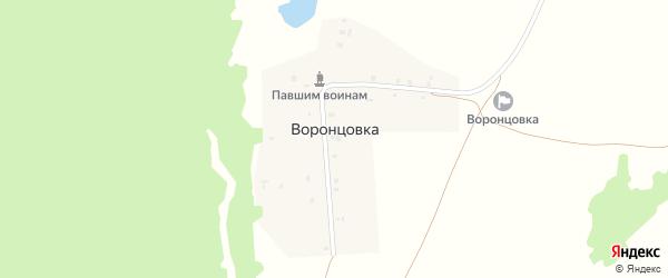 Озерная улица на карте деревни Воронцовки с номерами домов