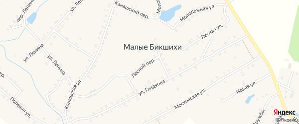 Лесной переулок на карте деревни Малые Бикшихи с номерами домов