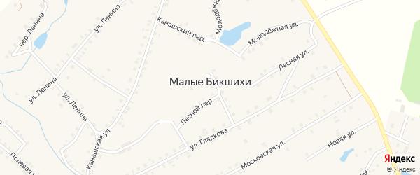 Лунная улица на карте деревни Малые Бикшихи с номерами домов