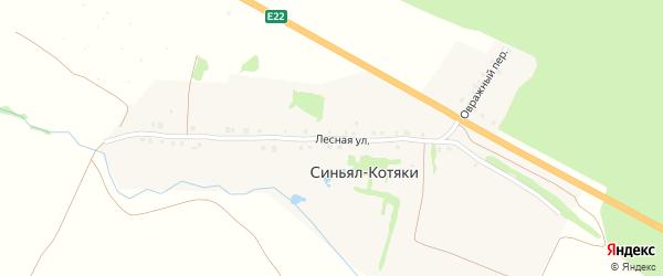 Лесная улица на карте деревни Синьяла-Котяки с номерами домов