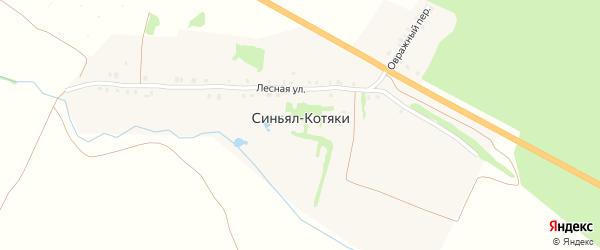 Шоссейная улица на карте деревни Синьяла-Котяки с номерами домов