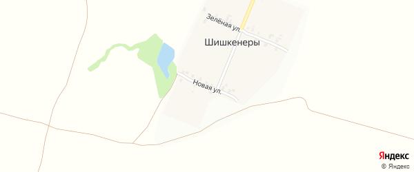 Новая улица на карте деревни Шишкенер с номерами домов