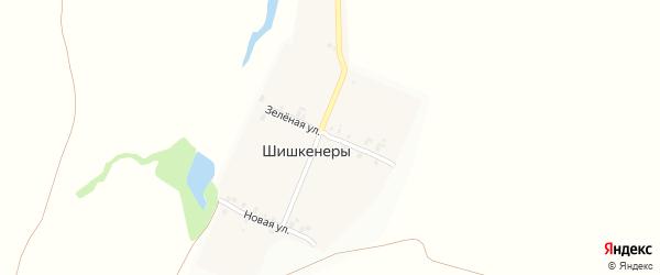 Зеленая улица на карте деревни Шишкенер с номерами домов