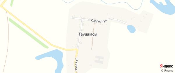 Озерная улица на карте деревни Таушкас с номерами домов