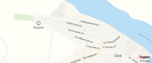 Колхозная улица на карте села Оли с номерами домов