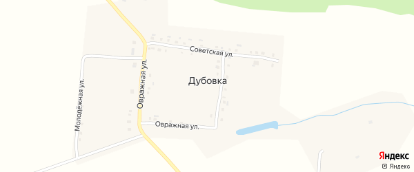 Молодежная улица на карте деревни Дубовки с номерами домов