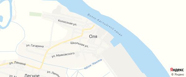 Карта села Оли в Астраханской области с улицами и номерами домов