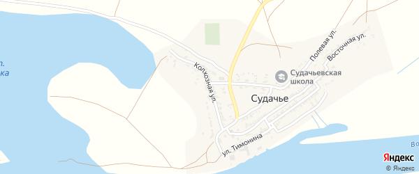 Колхозная улица на карте села Судачьего с номерами домов