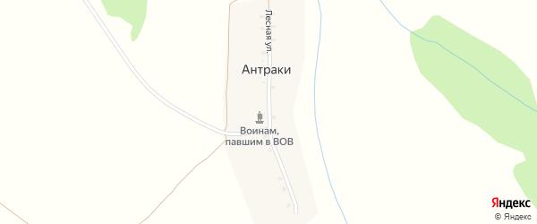 Лесная улица на карте деревни Антраки с номерами домов