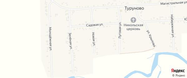 Новая улица на карте села Туруново с номерами домов