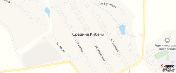 Крупская улица на карте деревни Средние Кибечи с номерами домов