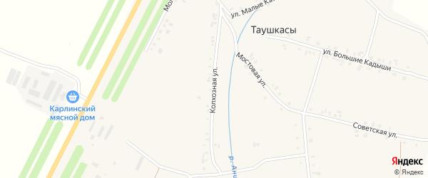 Колхозная улица на карте деревни Таушкас с номерами домов