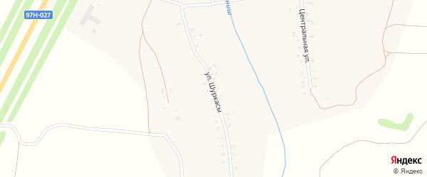 Улица Шуркасы на карте деревни Таушкас с номерами домов