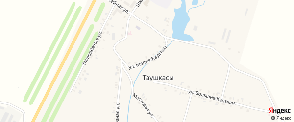 Улица Малые Кадыши на карте деревни Таушкас с номерами домов