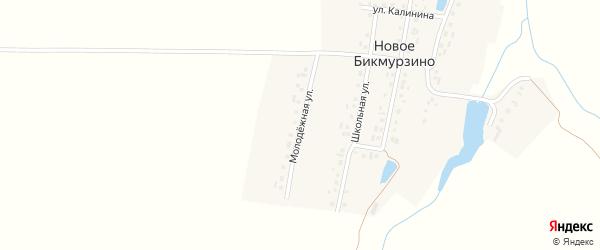 Молодежная улица на карте деревни Новое Бикмурзино с номерами домов