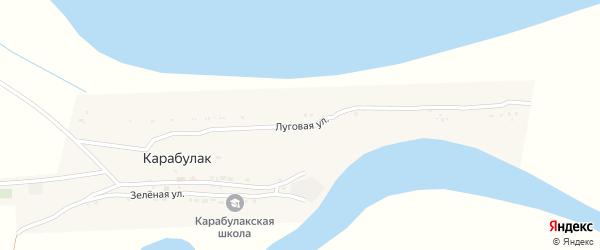 Луговая улица на карте поселка Карабулака с номерами домов