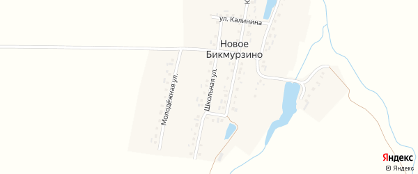 Школьная улица на карте деревни Новое Бикмурзино с номерами домов