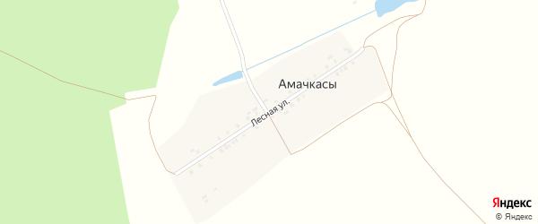 Лесная улица на карте деревни Амачкасы с номерами домов