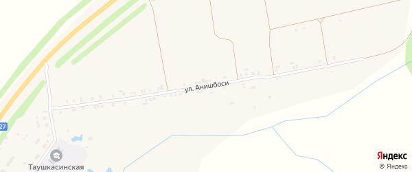 Улица Анишбоси на карте деревни Таушкас с номерами домов