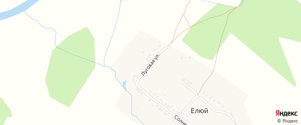 Зеленая улица на карте деревни Елюя с номерами домов